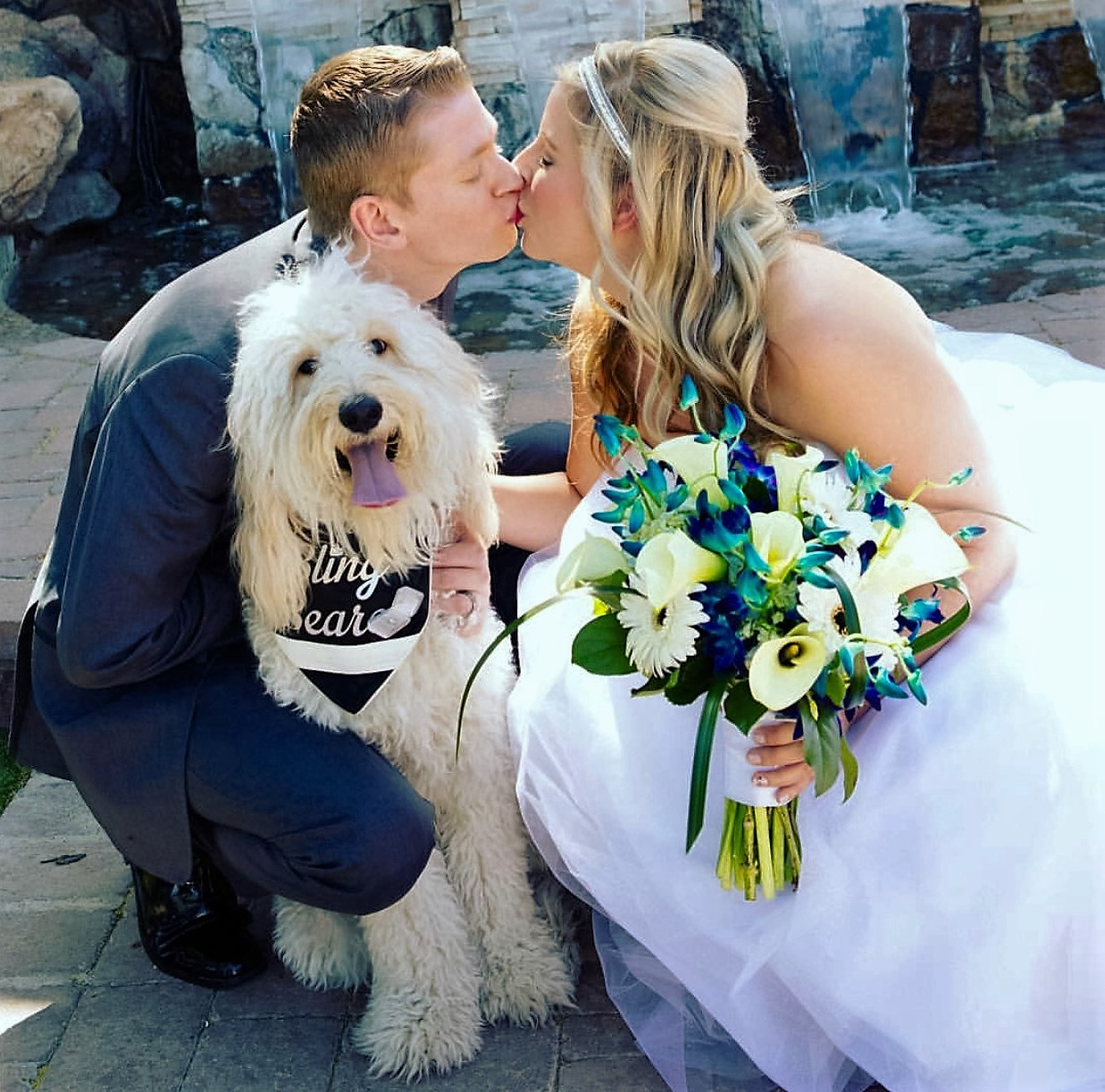 Goldendoodles As Service Dogs